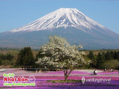 Du lịch Nhật Bản cung đường Vàng