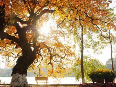 khám phá Miền Bắc 6 ngày 5 đêm mùa thu hà nội