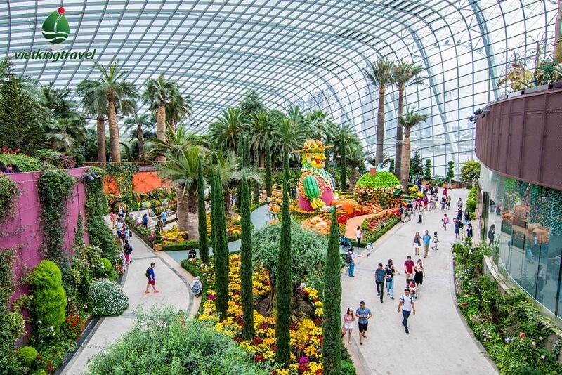 Xem những hình ảnh tuyệt đẹp trong khu Flower Dome